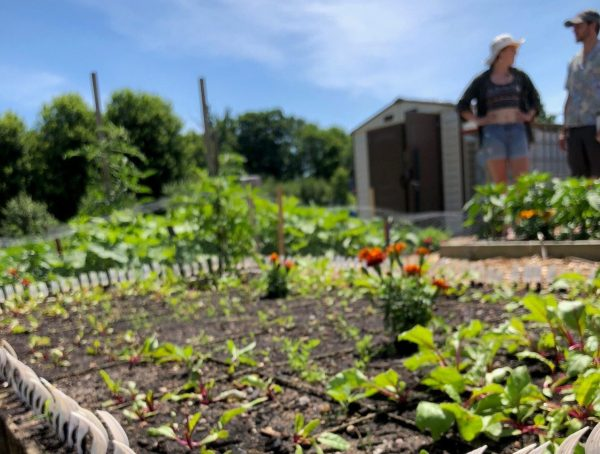 community garden lined with spoons